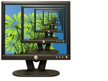 Muitos monitores Imagem de Stock