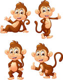 Muitos monkey expressões Fotos de Stock