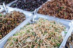 Muitos mornos e inseto fritados. imagens de stock royalty free