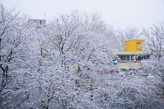 Muitos nevam árvores com uma construção amarela no fundo Foto de Stock Royalty Free