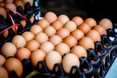 Muitos ovos Foto de Stock