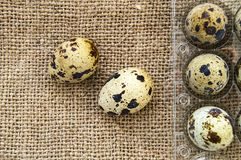 Muitos ovos de codorniz em um assoalho de madeira muitos ovos de codorniz no saco de linho em um assoalho de madeira, ovos de cod Imagem de Stock Royalty Free