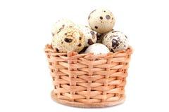 Muitos ovos de codorniz em uma cesta pequena Em um fundo branco Isolado fotografia de stock