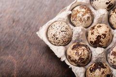 Muitos ovos de codorniz salpicados frescos no recipiente do cartão Imagens de Stock