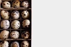 Muitos ovos em um fundo branco Imagens de Stock Royalty Free