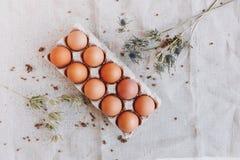 Muitos ovos marrons Imagem de Stock Royalty Free