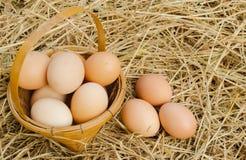 Muitos ovos na cesta no assoalho. Fotografia de Stock Royalty Free