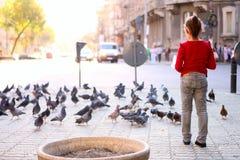 Muitos pombos e uma menina foto de stock