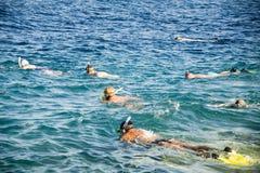 Muitos povos snorkeling Imagem de Stock