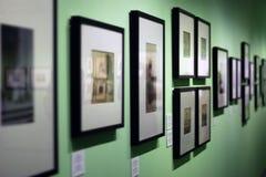 Muitos quadros da foto com as fotografias do vintage que penduram na parede verde na galeria de arte imagens de stock