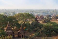 Muitos templos em Bagan na manhã Imagens de Stock Royalty Free