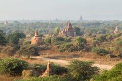 Muitos templos em Bagan na manhã Foto de Stock Royalty Free