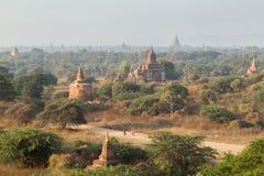 Muitos templos em Bagan na manhã Fotografia de Stock Royalty Free