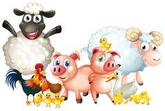 Muitos tipos de animais de exploração agrícola ilustração do vetor