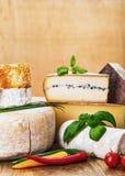 Muitos tipos de queijo e de vegetais franceses Fotografia de Stock Royalty Free