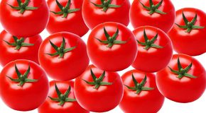 Muitos tomates maduros grandes no fundo branco, close up fotografia de stock