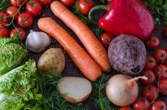Muitos vegetais frescos e orgânicos do verão Fotografia de Stock Royalty Free