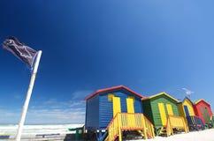 Muizenberg baignant des boîtes avec le drapeau de requin Image stock