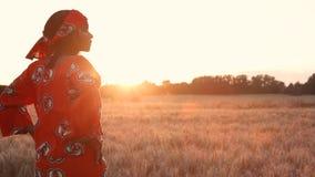 Mujer africana en la ropa tradicional que se coloca en un campo de cosechas en la puesta del sol o la salida del sol almacen de video