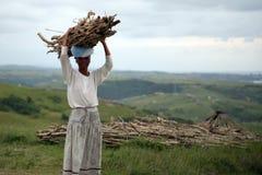 Mujer africana que descansa mientras que lleva la madera en Suráfrica Imágenes de archivo libres de regalías