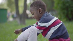 Mujer afroamericana bonita que miente en la hierba en el parque, su peque?o hijo que se sienta encima de ella que toca su cara metrajes
