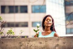 Mujer afroamericana joven que le falta con la rosa del blanco en nuevo Fotos de archivo