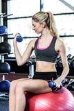 Mujer apta que ejercita con pesas de gimnasia Imagenes de archivo