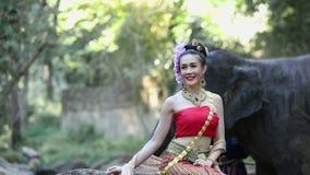 Mujer asiática con el elefante en la cala, Chiang Mai Tailandia almacen de video