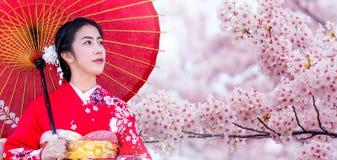 Mujer asiática que lleva el kimono y la flor de cerezo tradicionales japoneses en la primavera, Japón imagen de archivo