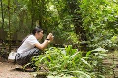 Mujer asiática que toma las fotos en bosque del otoño Fotografía de archivo