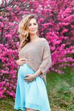 Mujer asi?tica embarazada feliz que camina en el parque imagen de archivo