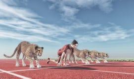 Mujer atlética con un guepardo Imagen de archivo libre de regalías