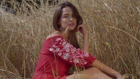 Mujer atractiva con una paja en su boca que se sienta entre las espiguillas en el campo de trigo que mira la cámara conexi?n almacen de metraje de vídeo
