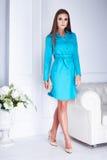 Mujer atractiva de la morenita del negocio del modelo de moda de la belleza Foto de archivo libre de regalías