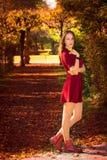 Mujer atractiva del otoño Imagen de archivo libre de regalías