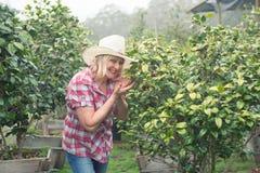 Mujer atractiva en el sombrero que mira la planta en cuarto de niños con sonrisa Imagen de archivo