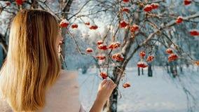 Mujer atractiva hermosa en parque del invierno metrajes