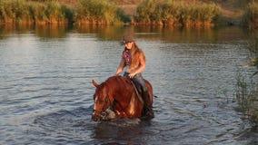 Mujer atractiva joven en el lago que monta un caballo marrón metrajes