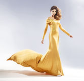 Mujer atractiva vestida en un vestido de noche Imagenes de archivo