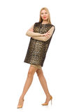 Mujer bastante joven en el chaleco del leopardo aislado encendido fotos de archivo