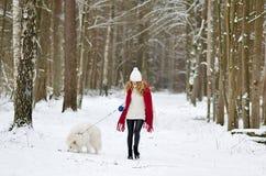 Mujer bastante joven en el invierno Forest Walking con su samoyedo del blanco del perro foto de archivo