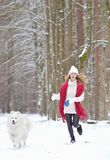 Mujer bastante joven en el invierno Forest Walking con su samoyedo del blanco del perro imágenes de archivo libres de regalías