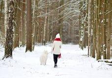 Mujer bastante joven en el invierno Forest Walking con su samoyedo del blanco del perro fotos de archivo