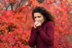 Mujer blackhaired joven en el sweather rojo que calienta sus manos soplando estancia en arbustos rojos del autumnn fotos de archivo