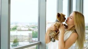 Mujer bonita con el pelo rubio largo con el pequeño perrito lindo del terrier de Yorkshire metrajes