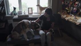Mujer bonita con el perro esquimal en el sofá almacen de metraje de vídeo