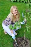 Mujer bonita del jardinero con las herramientas que cultivan un huerto Fotos de archivo