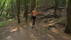 Mujer bonita deportiva y activa que corre en Forest Trail, forma de vida sana almacen de metraje de vídeo