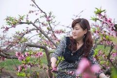 Mujer bonita en jardín del melocotón Foto de archivo