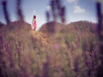 Mujer bonita joven en campo de la lavanda Foto de archivo